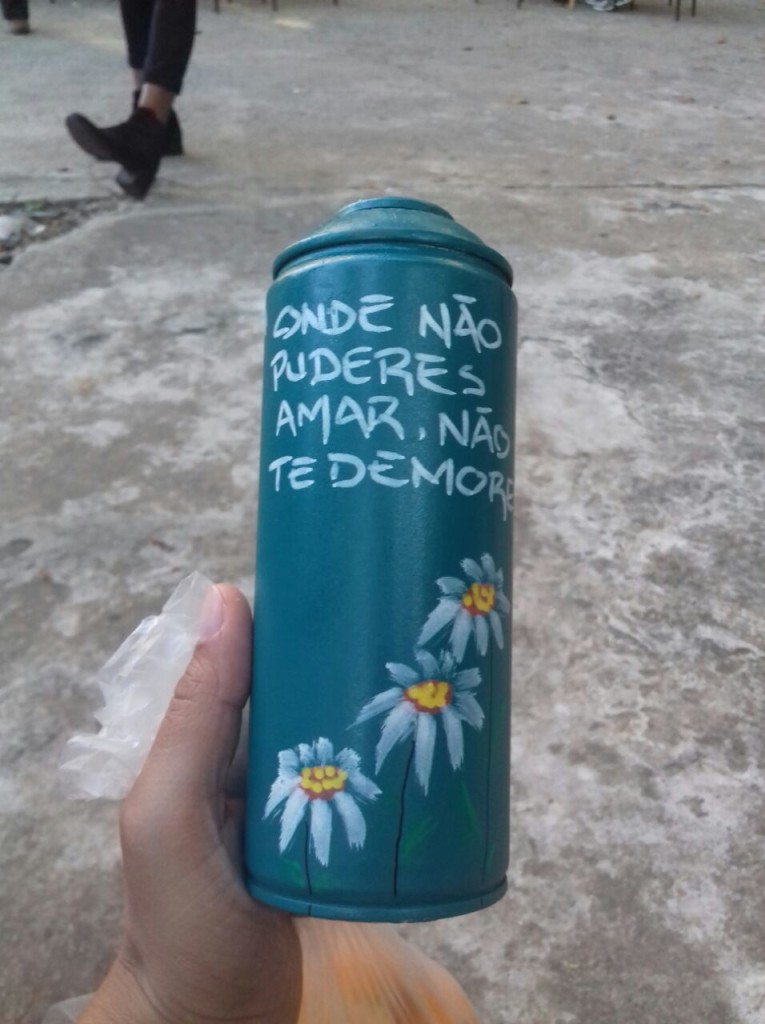 00x Ocupa Pacaembu - Roberta Pereira03